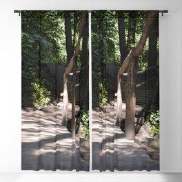 The path 1 Blackout Curtain