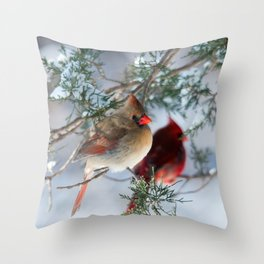 Shining on Her Own (Cardinal) Throw Pillow