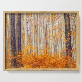 Golden Autumn Forest (Color) Serving Tray