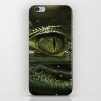 crocodile iPhone & iPod Skins featuring Crocodile by PrinzPhotographie