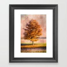 A sunny autumn day Framed Art Print