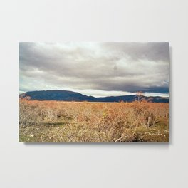 New Zealand: On the Road (7) Metal Print
