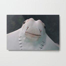 Smiling Stingray Metal Print