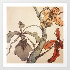 Hello Orchids Art Print
