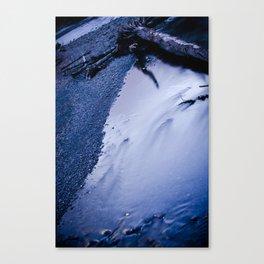 Sticks And Stones Break Glass Canvas Print