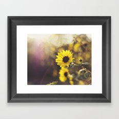 Magic Light Framed Art Print