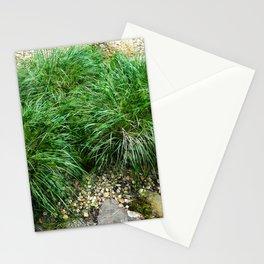 Decorative Grass Stationery Cards