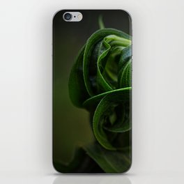 All Wound Up iPhone Skin