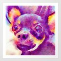 Lizzy (Chihuahua) by beththompson