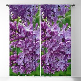 Lilac Blooms Blackout Curtain