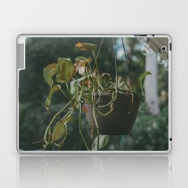 Vining Plant Laptop & iPad Skin