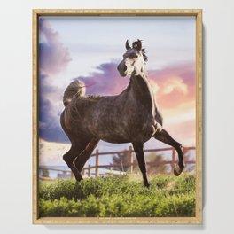 sunset stallion Serving Tray