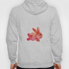 Little Bunny No. 1b by kathy Morton Stanion Hoody