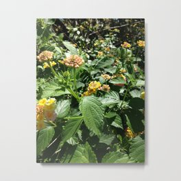 Bountiful Flowers by Nancy Sack Metal Print