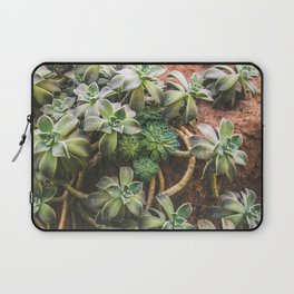 Botanical Gardens - Succulent #882 Laptop Sleeve