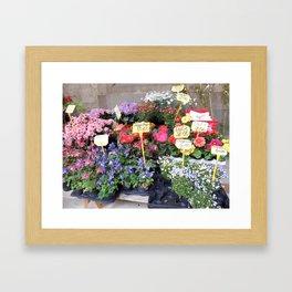 scenic Framed Art Print