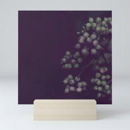 Sage Green Seeds on Deep Plum Mini Art Print