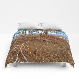 What Lies Beneath Comforters