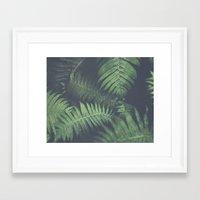 fern Framed Art Prints featuring fern by elle moss