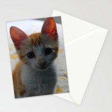 ORANGE CAT. Stationery Cards