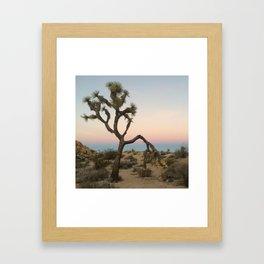 Desert Sunset Colors Framed Art Print