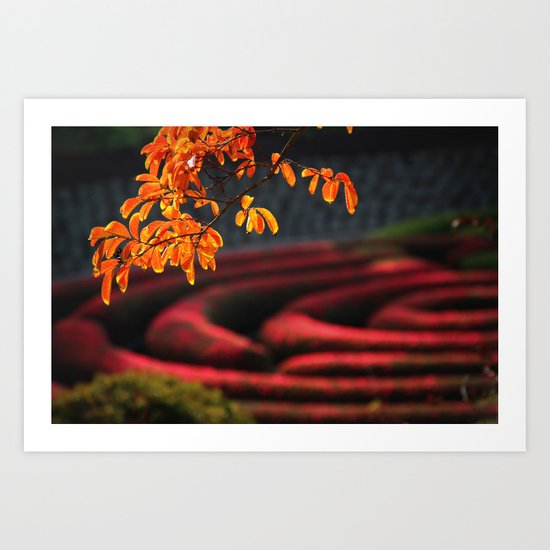 last days of fall Art Print