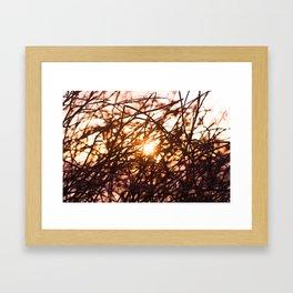 Let the light shine in.  Framed Art Print