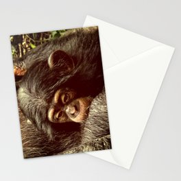 Baby Chimpanzee Cuddling Close to Mom with Vintage Look Stationery Cards