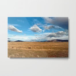 New Zealand: On the Road (2) Metal Print