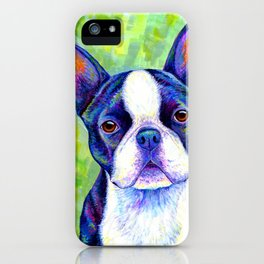 Colorful Boston Terrier Dog iPhone Case