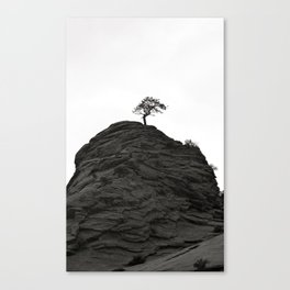Forever Alive Canvas Print