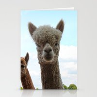 alpaca Stationery Cards featuring Alpaca by SC Photography