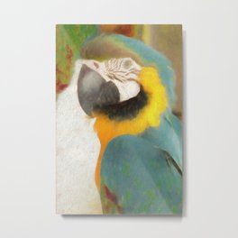 Macaw in Watercolor Metal Print