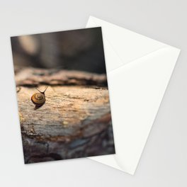 His perfect world Stationery Cards