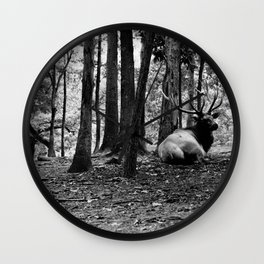 Elk Laying Down in Woods Wall Clock