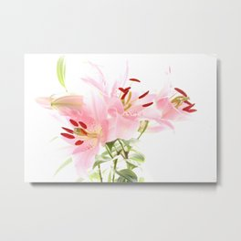 Flower lights in pink and white Metal Print