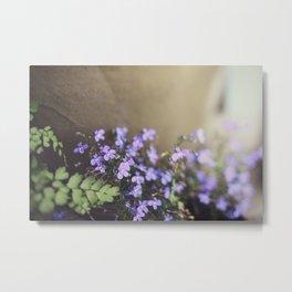 porch flowers Metal Print