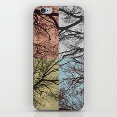 Trees // Squared iPhone & iPod Skin