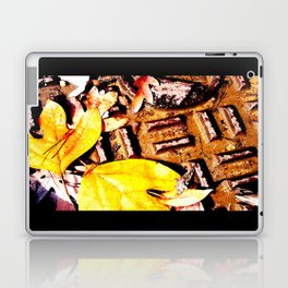 Leaves & Manhole Cover  Laptop & iPad Skin