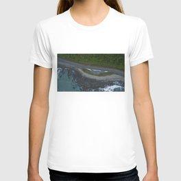 kaikoura coastline vertical view by drone camper serpentines T-shirt