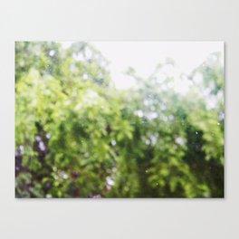 SOMETHING LIKE A TREE Canvas Print