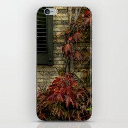 vine. iPhone Skin