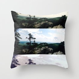Kaleidoscope Park Throw Pillow