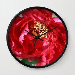 Tokyo Hama Rikyuu Koen Rose 2 Wall Clock