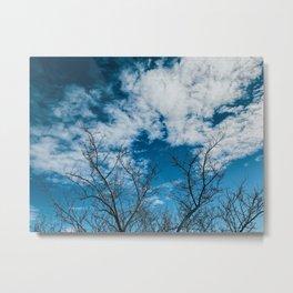 Reaching towards the sky Metal Print