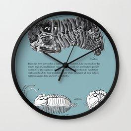 Trilobite Enrollment poster Wall Clock