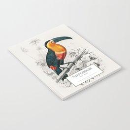 Toucan Notebook