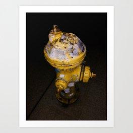 CapitalHill Fire hydrant 2019 Art Print