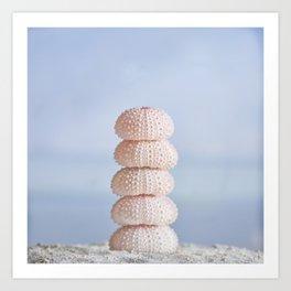 Pink sea cairn ocean urchins Art Print
