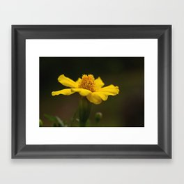 The color of HAPPY...... Framed Art Print